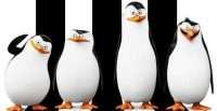 pingvini sa madagaskara baner 2