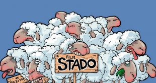 stado-mega-blog-baner